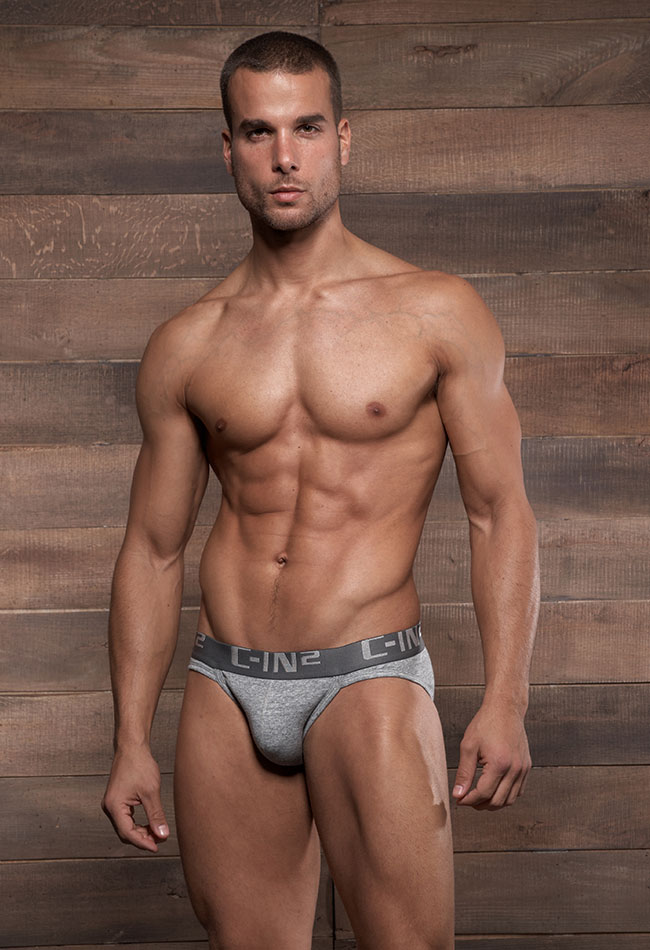 C-IN2 Slipy Core Low No Show Sport Brief - Šedá 3